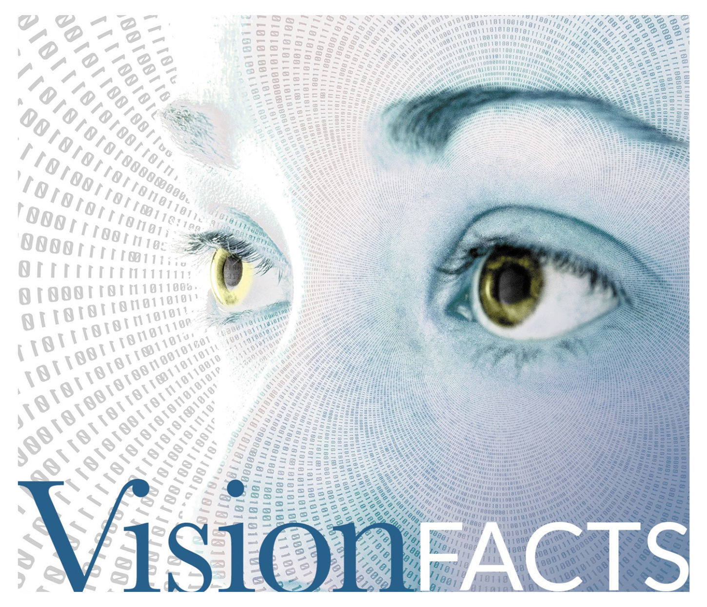 Vision Facts- Smaller